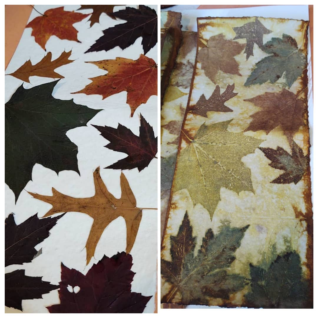 Eco-dyeing on paper